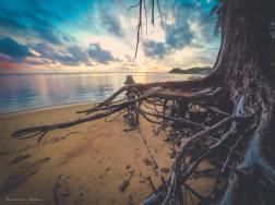Beautiful sunsets need cloudy skies... - Paul Coelho
